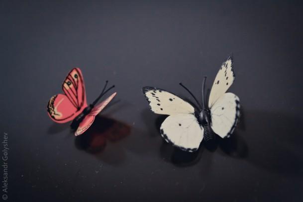 Пластмассовая жизнь - бабочки