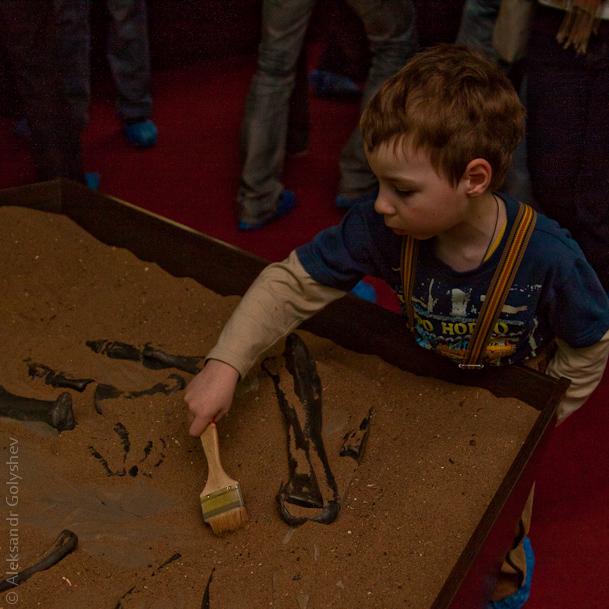 Юные палеонтологи