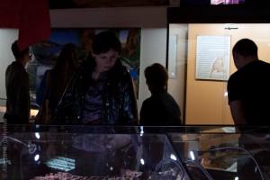 Ночь в музее