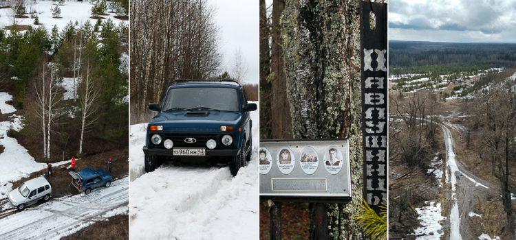 Самоизоляция среди лесов Слободского района