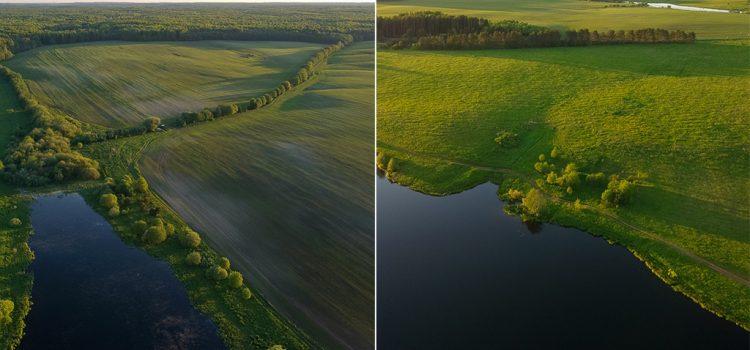 Скоковский пруд и окрестности