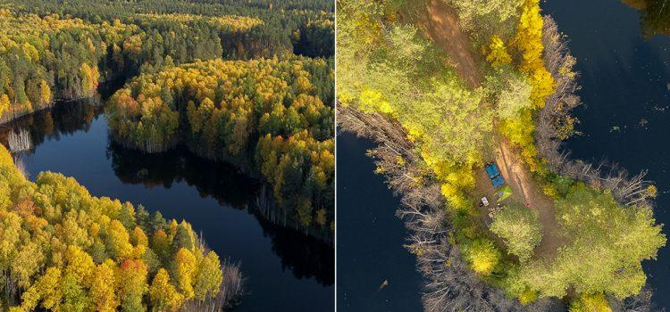 Озеро Чваниха в осеннем Медведском бору